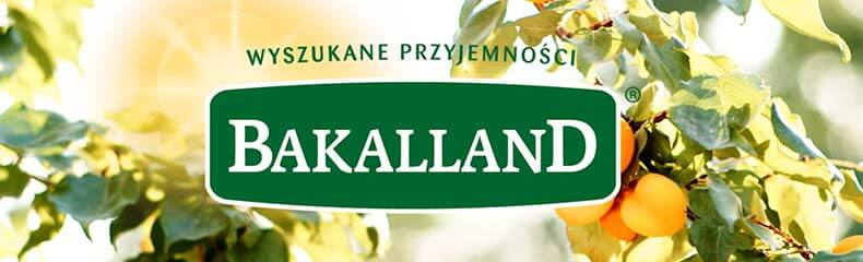 bakalland-b2b