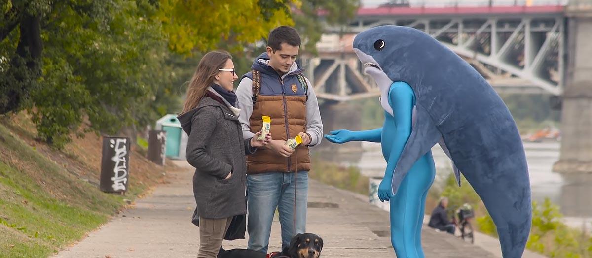 bakalland-wideo-snack-attack-rekin-w-wisle